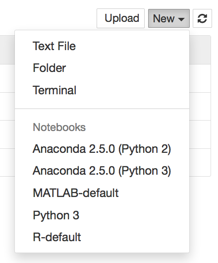 Language In 45 And 47 Stella Street: When You Select A Kernel, The Notebook User Interface (UI